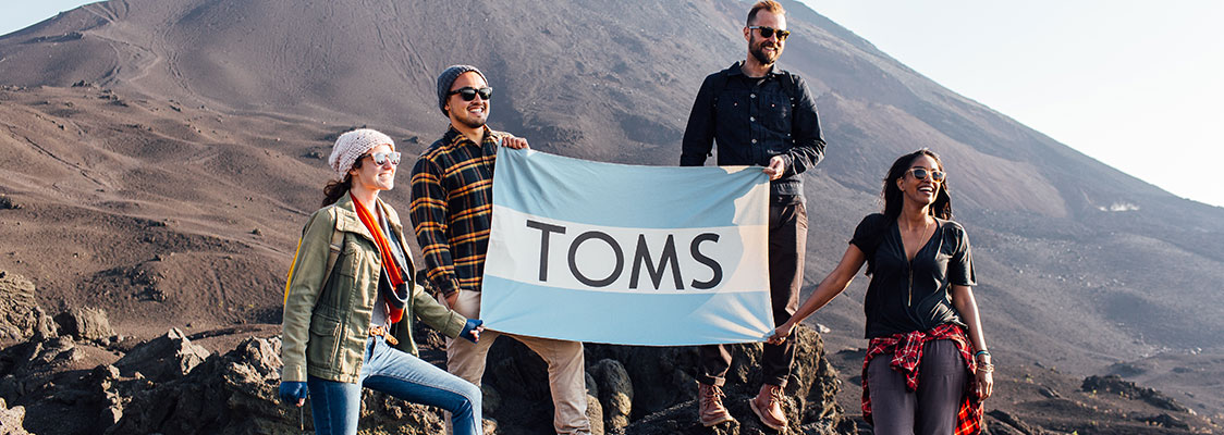 TOMS Seasonal Banner